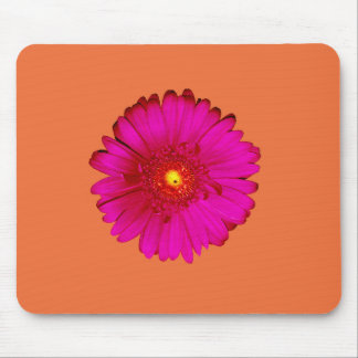 Hot Pink Gerbera Daisy on Orange Mouse Pad