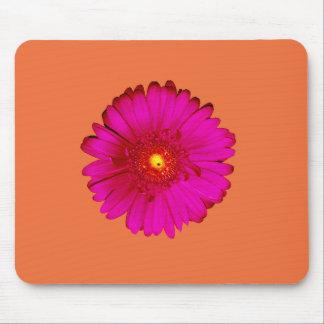 Hot Pink Gerbera Daisy on Orange Mouse Pad