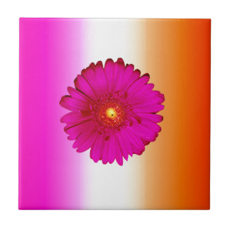 Hot Pink Gerbera Daisy on Pink Orange Small Square Tile