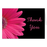 Hot Pink Gerbera (Gerber) Daisy Black Thank You Stationery Note Card