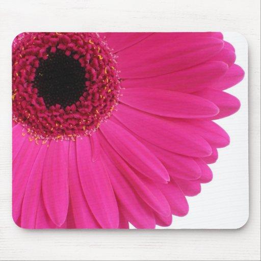 Hot Pink Gerbera Mouse Pad