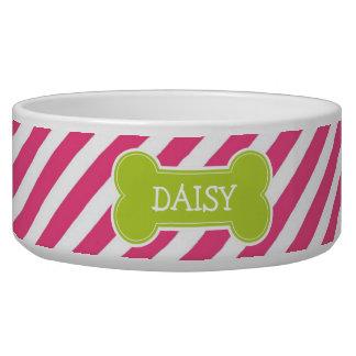 Hot Pink & Green Modern Diagonal Stripes Dog Water Bowl