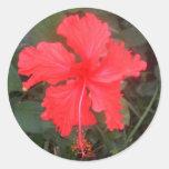 Hot Pink Hibiscus Round Stickers