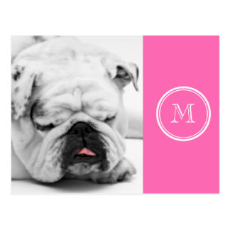 Hot Pink High End Colored Personalized Postcard