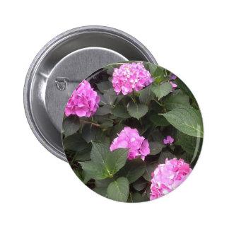 Hot Pink Hydrangea Pinback Button