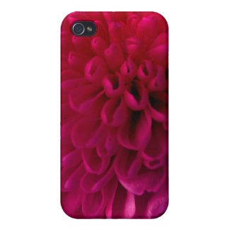Hot pink macro flower iphone 4 cover