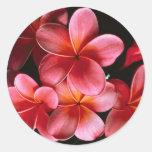 Hot pink matching Flowered Envelope seal stickers
