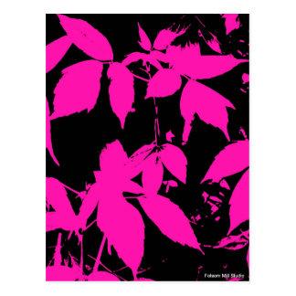 Hot Pink Nature Prints Postcard