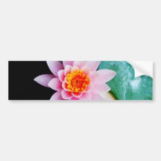 Hot Pink & orange lotus water lily flower Bumper Sticker