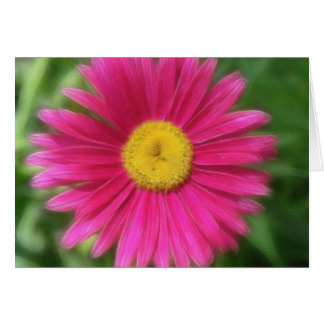 Hot Pink Painted Daisy Card
