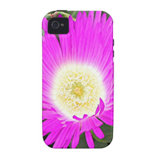 Hot pink Pigface flower in bloom Case-Mate iPhone 4 Covers