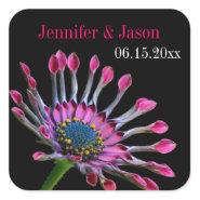 Hot Pink Purple African Daisy Wedding Seal Sticker