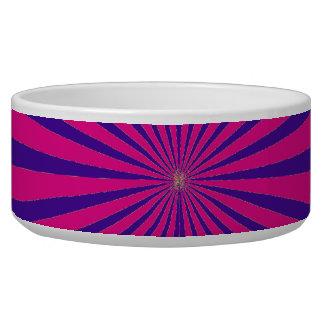 Hot Pink Purple Starburst Sun Rays Tunnel View Dog Water Bowls