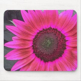 HOT Pink Raspberry Sunflower mousepad