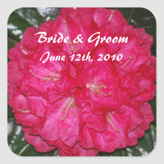 Hot Pink Rhododendron Bride & Groom Stickers