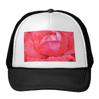 Hot Pink Rose Trucker Hat