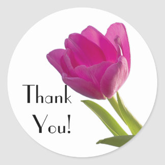 Hot Pink Tulip, Thank You! Classic Round Sticker
