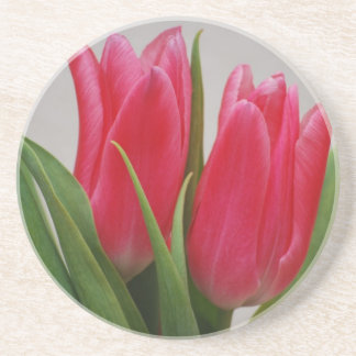 Hot Pink Tulips Coaster
