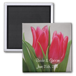 Hot Pink Tulips Magnet