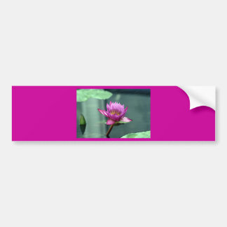 Hot Pink Water Lily Bumper Sticker