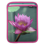 Hot Pink Water Lily iPad Sleeves
