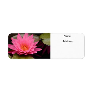 Hot Pink Water Lily Return Address Label