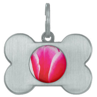 Hot Pink with White Tint Tulip Pet Tags