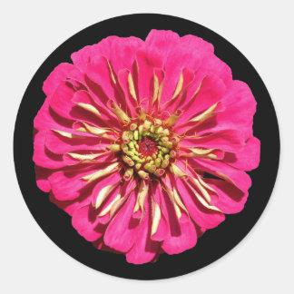 'Hot Pink Zinnea' Classic Round Sticker