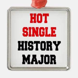 Hot Single History Major Metal Ornament