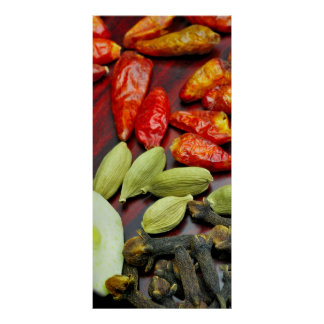 Hot Spices, Still Life Photo Poster
