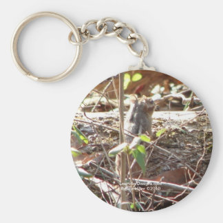Hot Springs Mountain, Arkansas Chipmunk Gifts Keychain