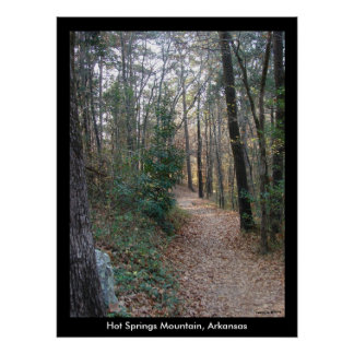 Hot Springs Mountain Arkansas Path Large Print