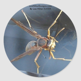 Hot Springs Mountain Wasp Gift & Aparel Classic Round Sticker