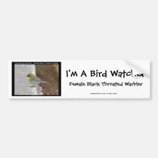 Hot Springs Mt Female Black Throated Warbler Gifts Bumper Sticker