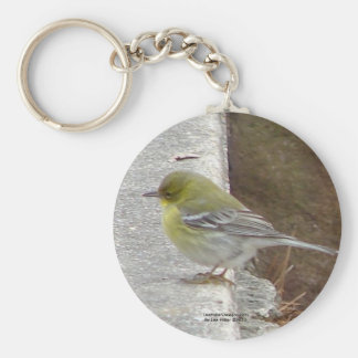 Hot Springs Mt Female Black Throated Warbler Gifts Keychain