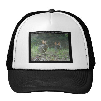 Hot Springs National Park, AR  Wild Rabbits Gifts Trucker Hat