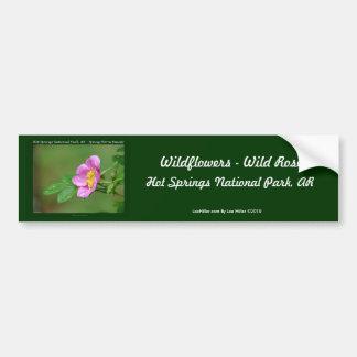 Hot Springs National Park, AR  Wild Rose Gifts Bumper Sticker