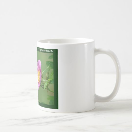 Hot Springs National Park, AR  Wild Rose Gifts Coffee Mug