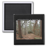 Hot Springs National Park Gulpha Gorge Trail 2 Inch Square Magnet