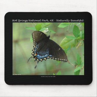 Hot Springs National Park Swallowtail Butterfly Mouse Pad