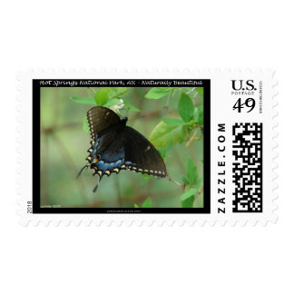 Hot Springs National Park Swallowtail Butterfly Postage