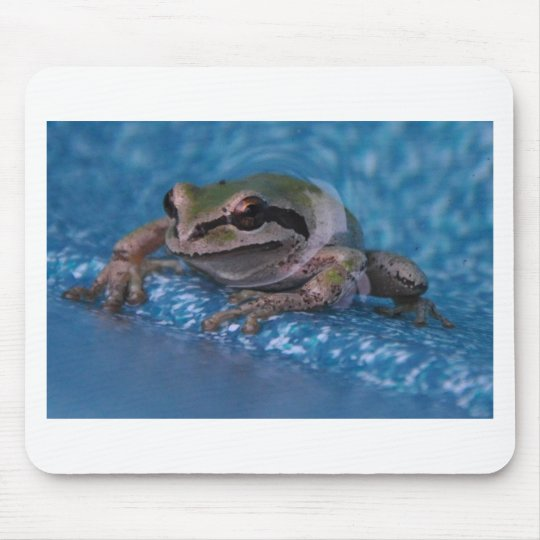 Hot Tubbing Frog Mouse Pad