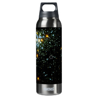 Hot White Dwarf Shines in Young Star Cluster NGC 1 16 Oz Insulated SIGG Thermos Water Bottle