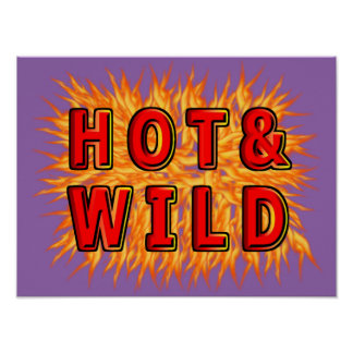Hot & Wild Poster