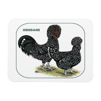 Houdan Chickens Vinyl Magnet