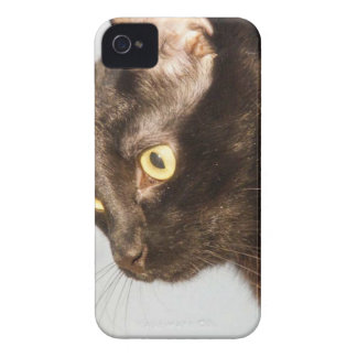 Houdini iPhone 4 Cover