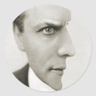 Houdini Optical Illusion Round Sticker
