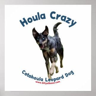 Houla Dog Crazy Poster