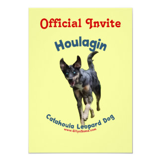 Houlagin Catahoula Dog Card