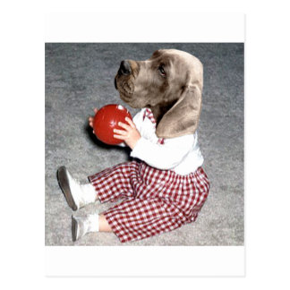 hound Ball Play Postcard